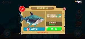 cf七月辅助:饥饿鲨世界大白鲨礼包值得买吗 大白鲨性价比分析